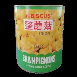 Hibiscus Mushroom whole 2840gm (China)